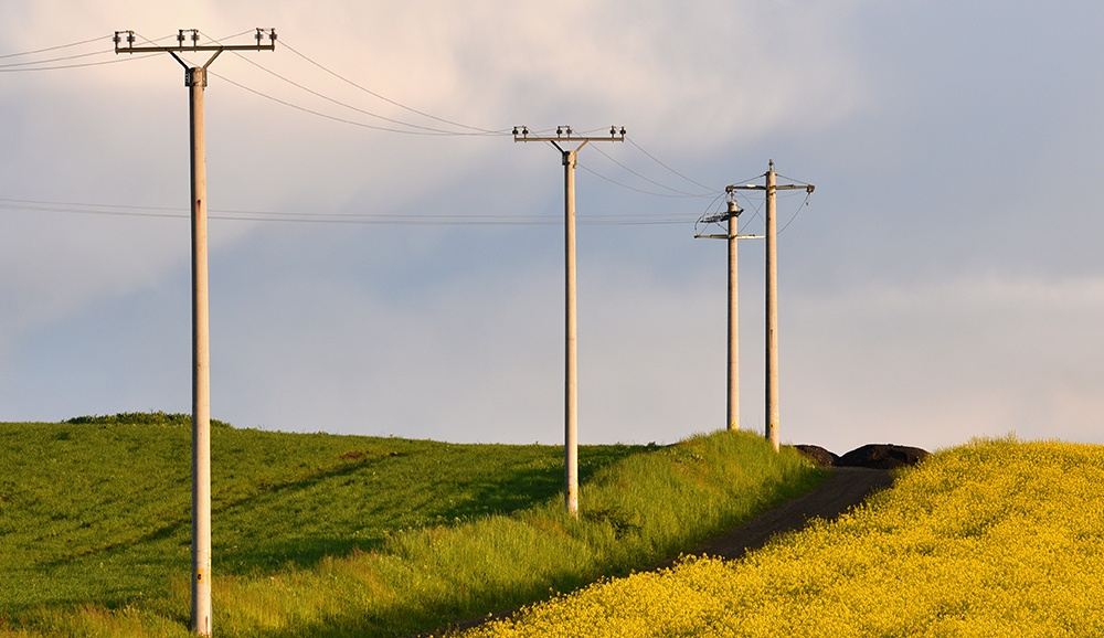 Overcoming Obstacles in Rural Electrification, Dana Steph